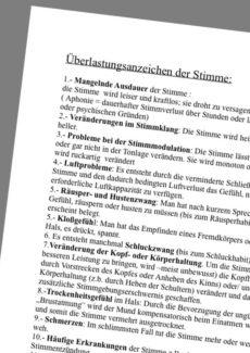 Beratungsbogen Stimmbelastung