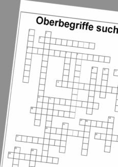 Kreuzworträtsel 'Oberbegriffe'