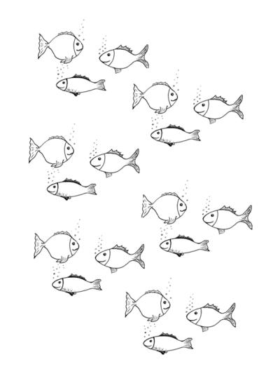 Spiel: Fische ansaugen bei Schetismus