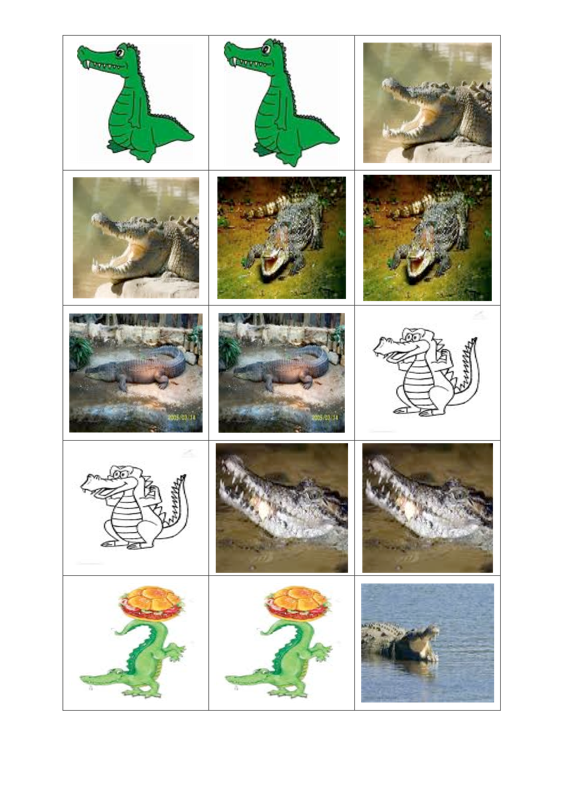 Krokodilememory