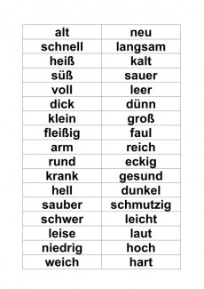 Wortkarten zu TwinFit Contraria