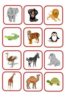 Bildkarten: Zootiere