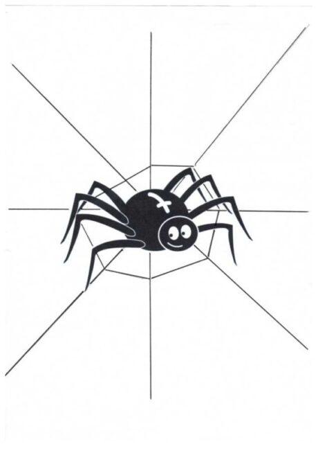 Vorlage für Dyslalie: Spinnennetz
