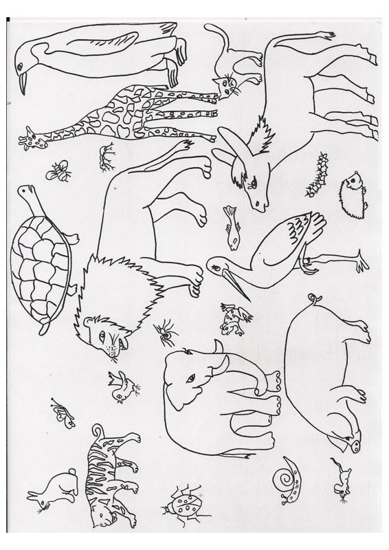 Wimmelbild: Tiere