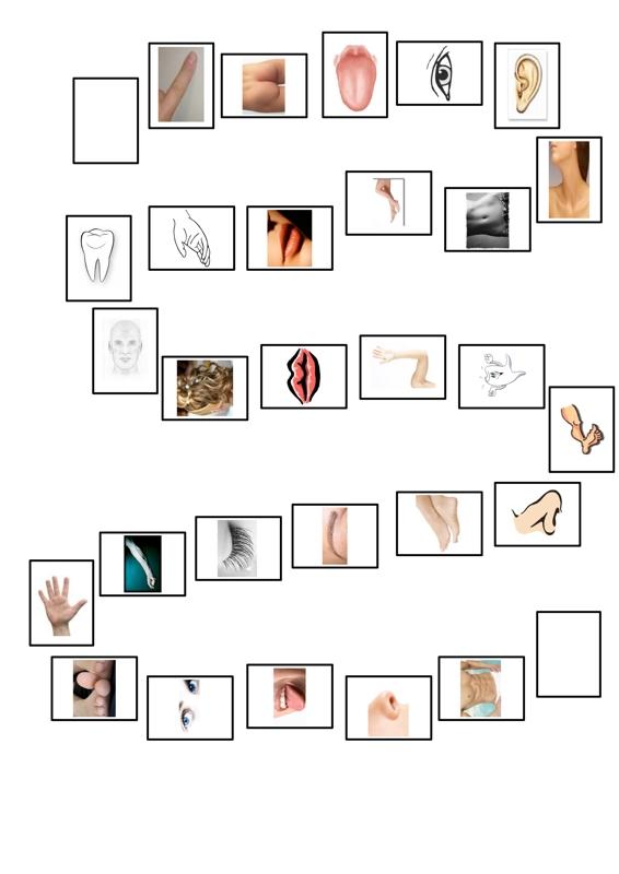 Therapiematerial zum Thema Körperteile (Seite 2) - Therapiematerial ...