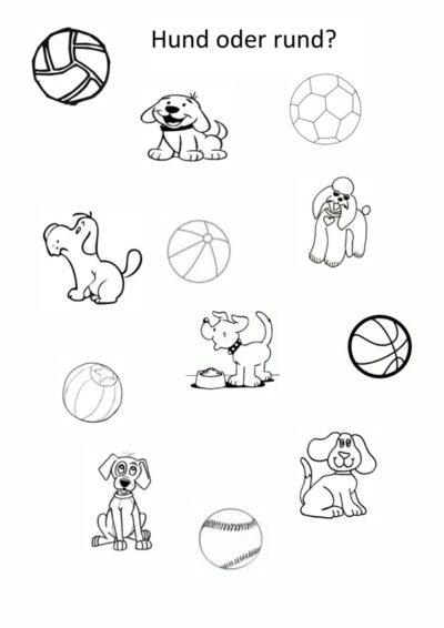 Differenzierung: Hund oder rund?