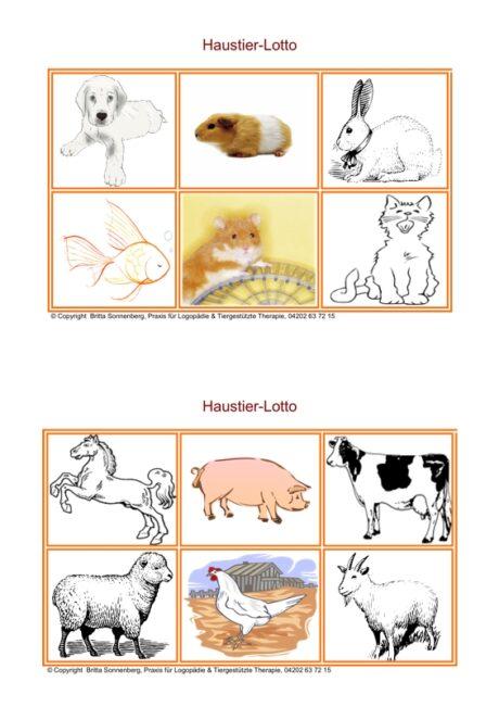 Spiel: Lotto Haustiere