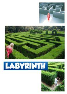 Spiel: Labyrinth