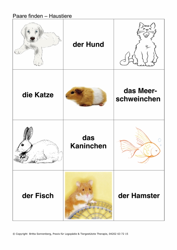 Therapiematerial Logop 228 Die Bilder Und Wortkarten Zum