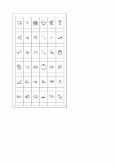 Kartensatz für Bilderjagd bei Schetismus
