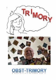 Spiel: Obst-Trimory