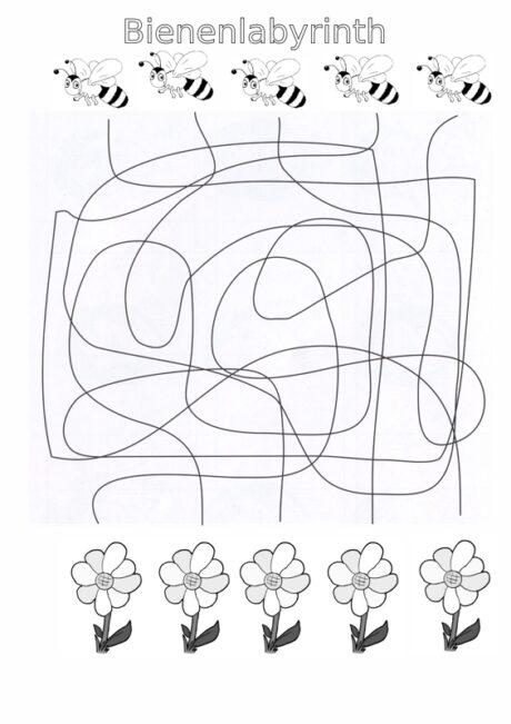 Sigmatismus: Bienenlabyrinth