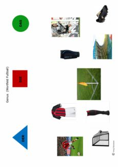 Grammatik: Genusmarkierung zum Wortfeld Fußball