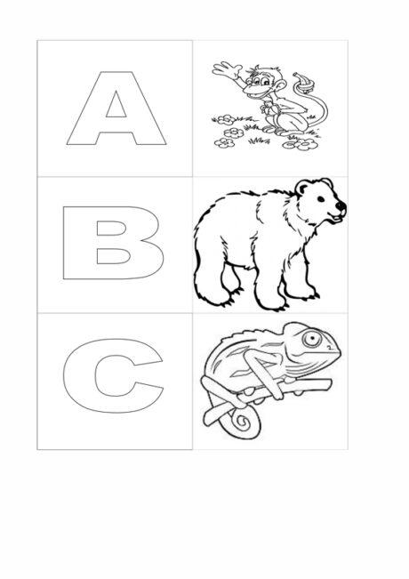 ABC mit Tieren