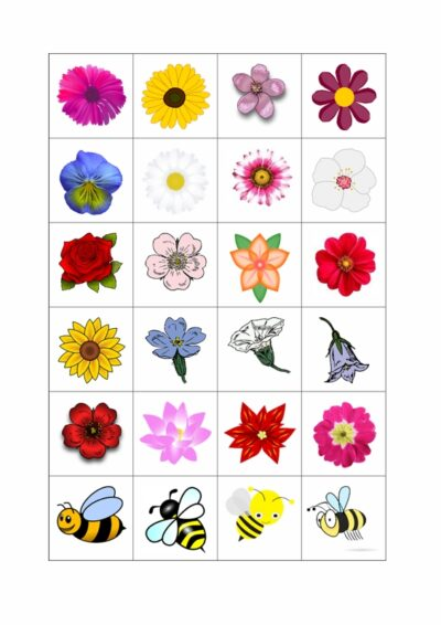 Sigmatismus: Blüten sammeln
