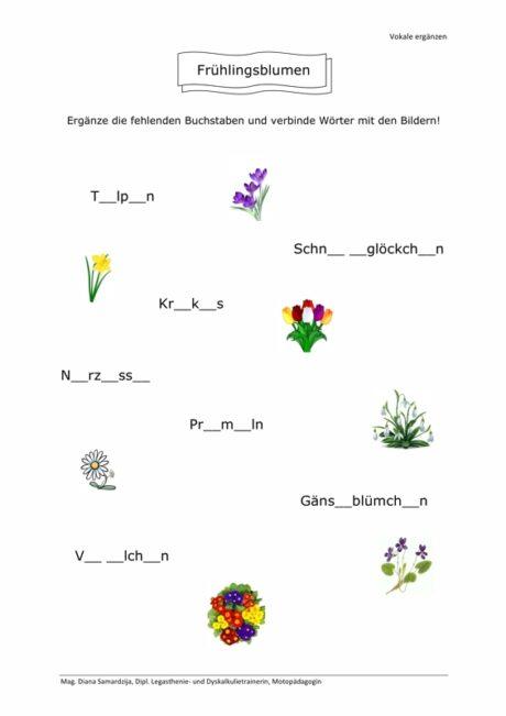 Frühlingsblumen: Vokale ergänzen