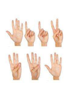 Finger zählen 1-6
