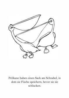 PluArtSe Tiere