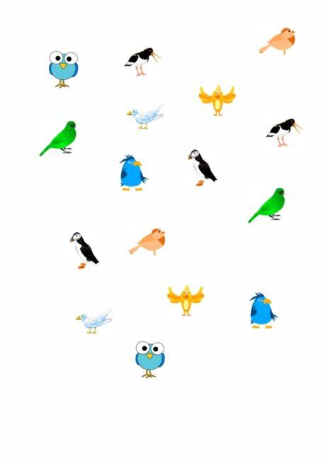 Welche Vögel sind gleich?