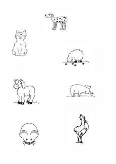 Tiere ohne Schwanz