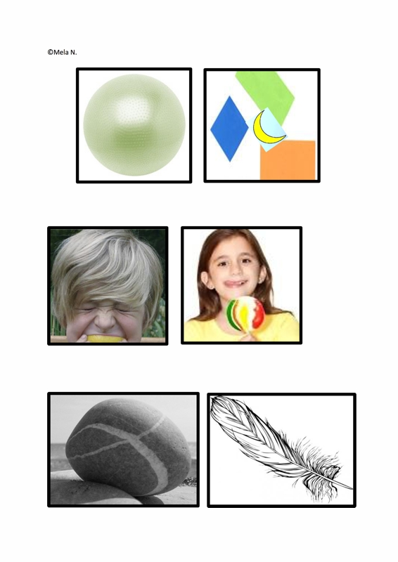 Merkmalskarten Obst
