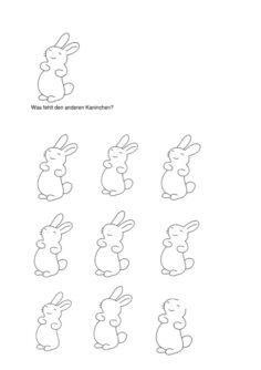 Was fehlt den Kaninchen?