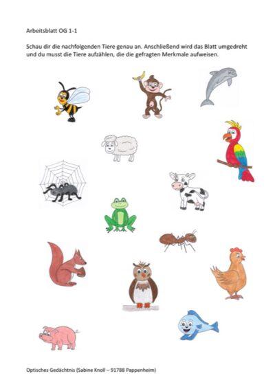 Tiere nach Merkmalen