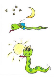 Referenzbild Schlange