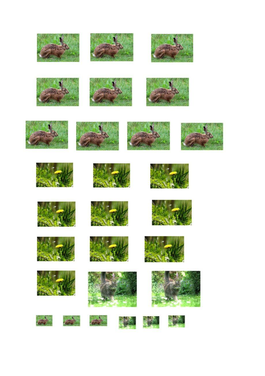 Sigmatismus-Spiel mit Löwenzahn und Hasen