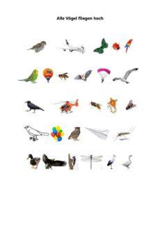 Alle Vögel fliegen hoch Bildersammlung