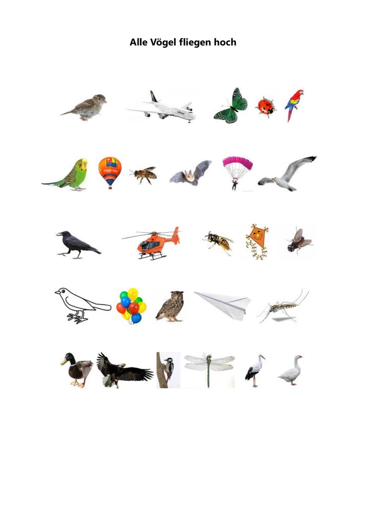 Alle Vögel Fliegen Hoch