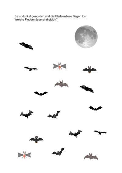 Welche Fledermäuse sind gleich?