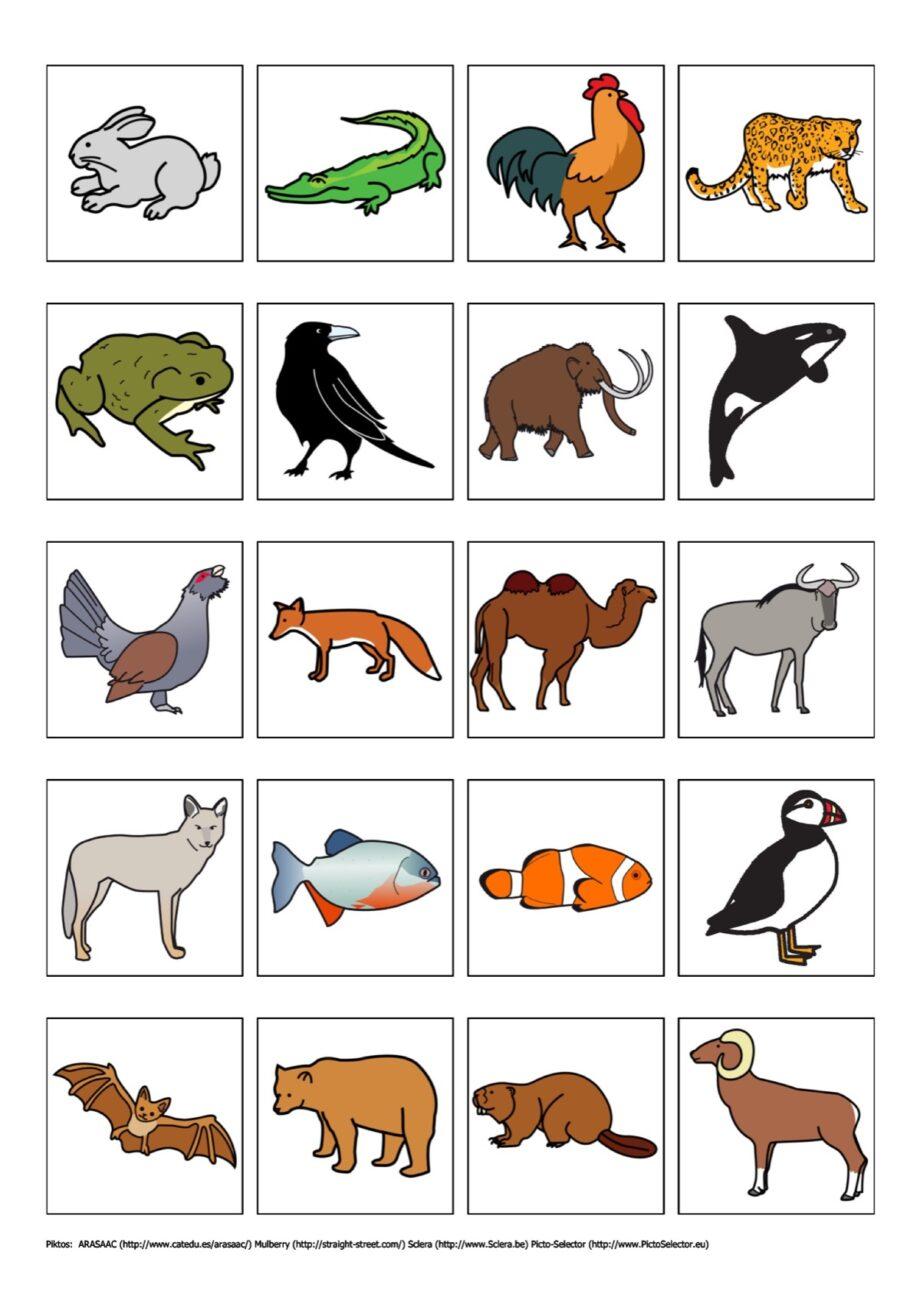 Tier Animal Print Cake
