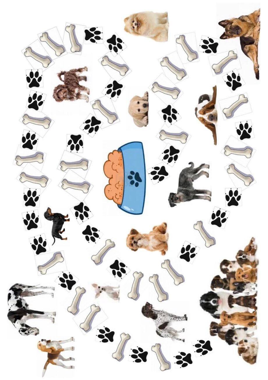 Spielplan Hunde