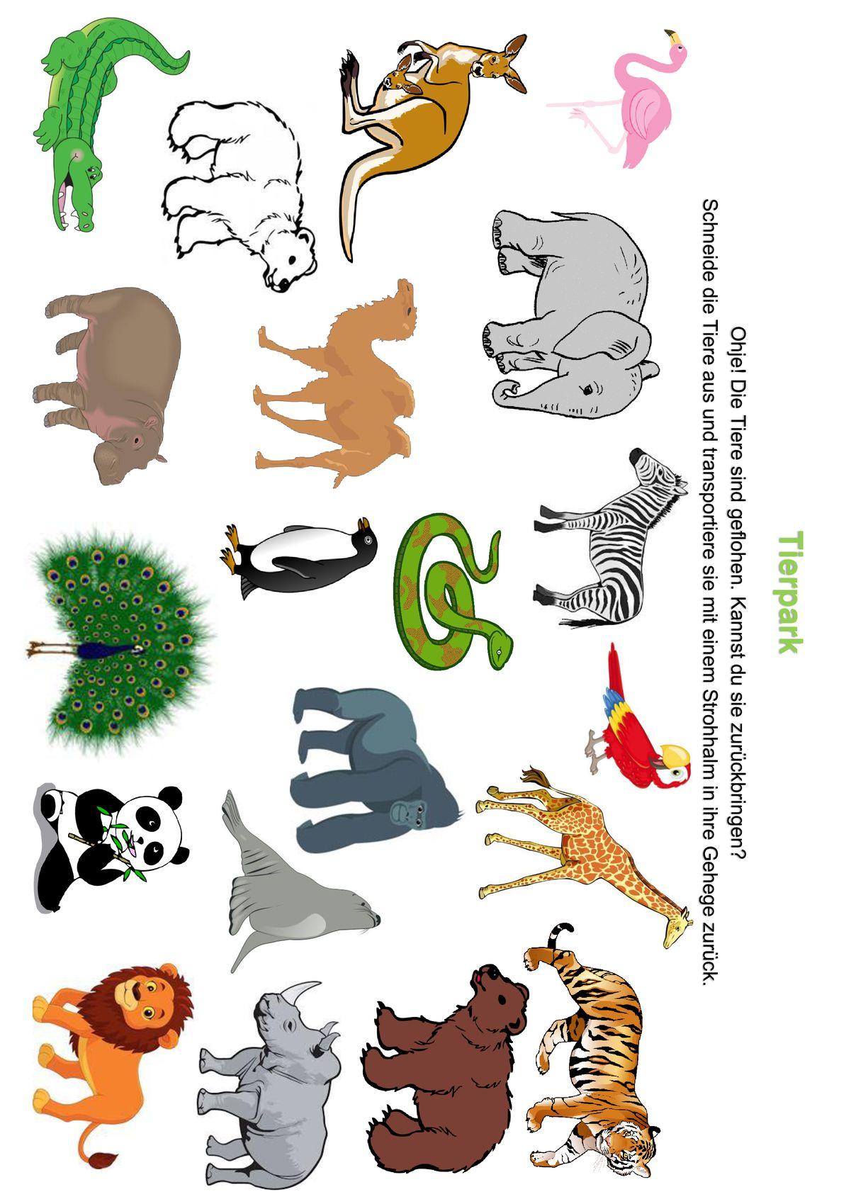 Tierpark Spiele