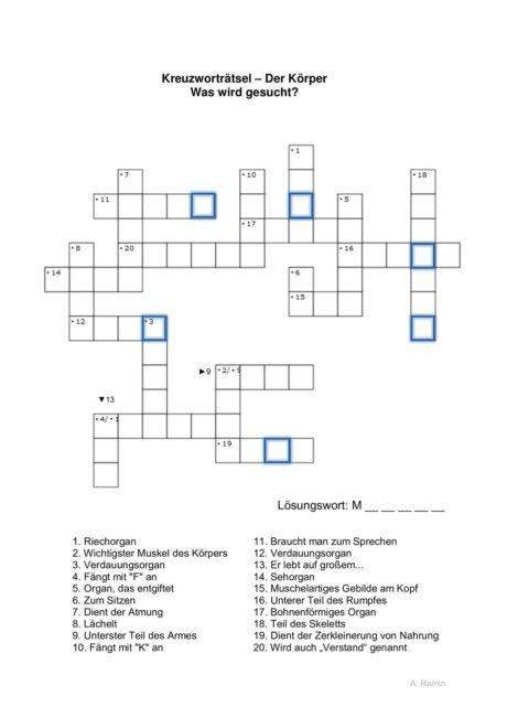 Wortfindung Kreuzworträtsel Körperteile