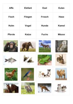 Lückensätze und Redewendungen mit Tieren
