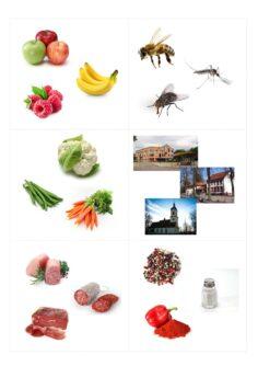 Ober-/Unterbegriffe Bilder-Wortstreifen-Lückensätze