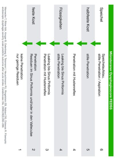 FEES Protokoll bei akutem Schlaganfall (FEDSS)