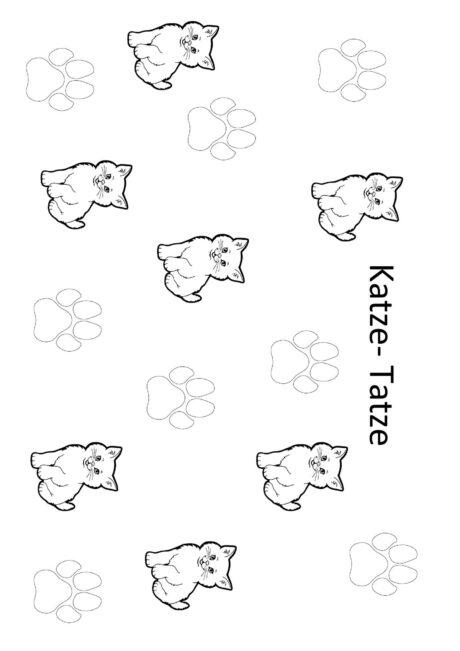 /k,t/ Katze oder Tatze