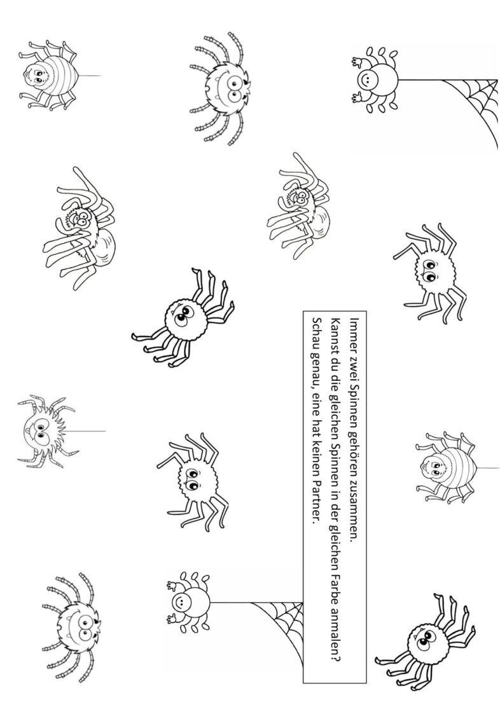 [sch] – Spinnen finden