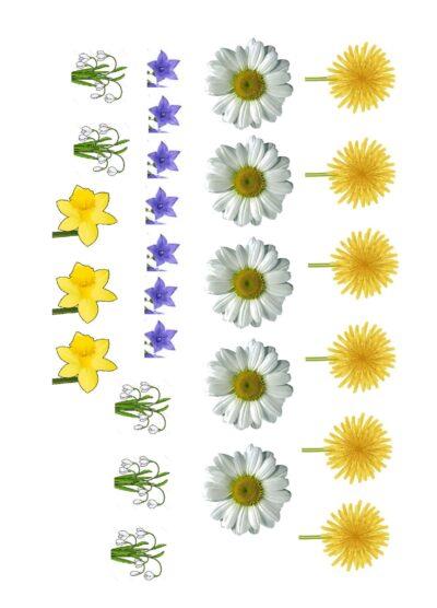 Frühlings-Ansaugespiel