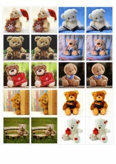 Teddy-Memory