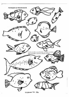 Fische zur Mundmotorik / Sprachentwicklung