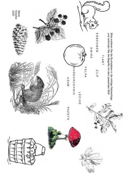 Buchstaben sortieren und Bilder zuordnen: Im Herbst