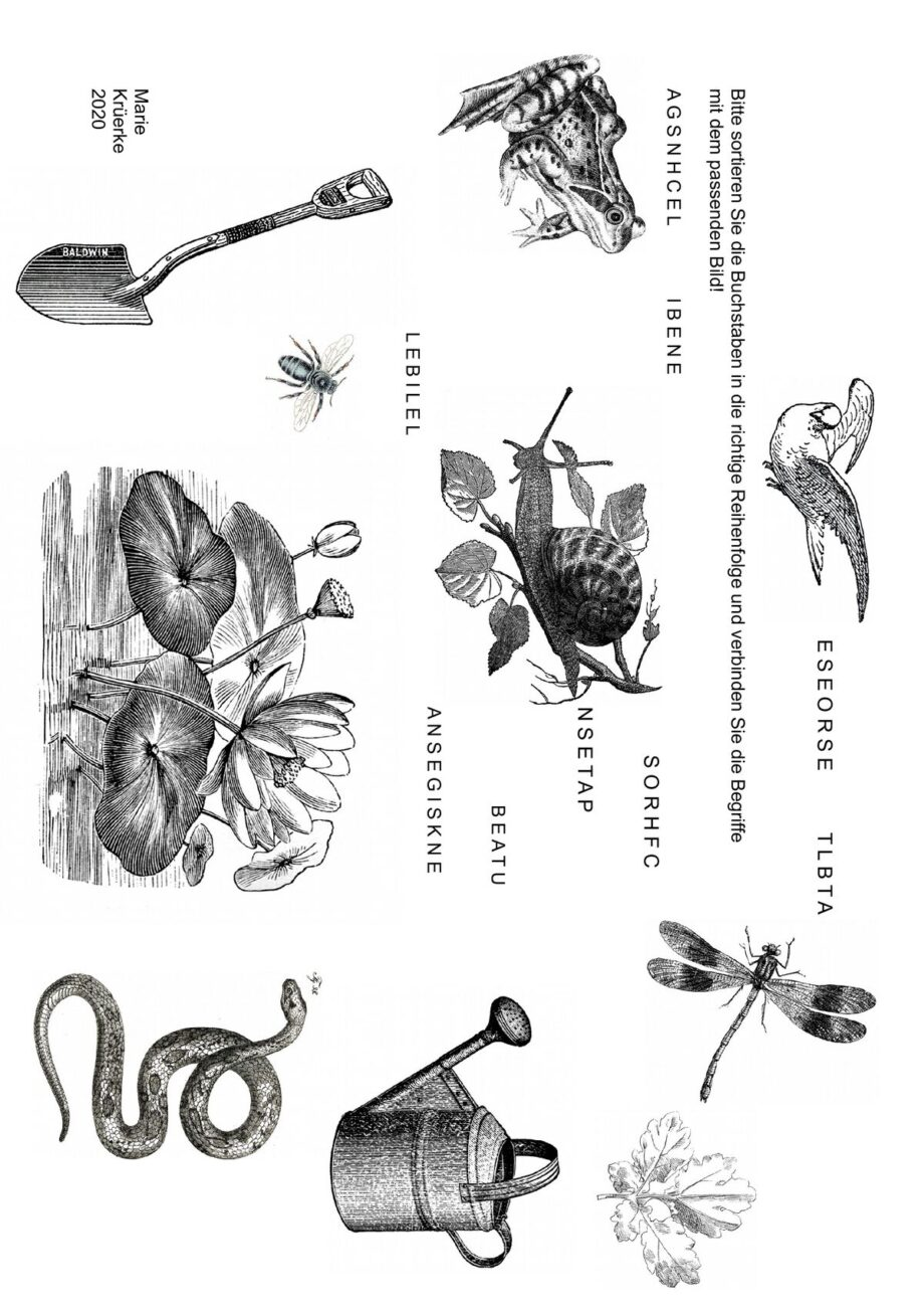 Buchstaben sortieren und Bilder zuordnen: Am Gartenteich
