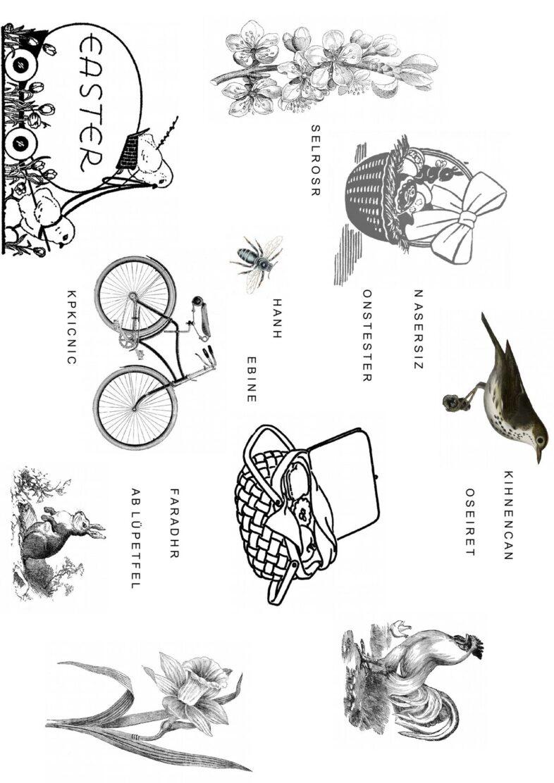 Buchstaben sortieren und Bilder zuordnen: Frühling