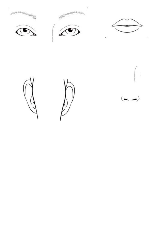 Körperteile – Gesicht – Einzelteile