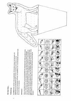 Hase-Fuchsspiel Sigmatismus