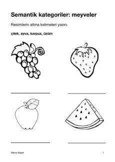 Wort-Bild-Zuordnung türkisch